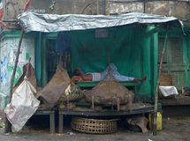 Sièste chez Chawringhee - Kolkata (Calcutta - Inde) Photo libre de droits