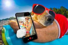 Sièste de chien et de propriétaire à la plage Photos libres de droits