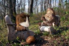 Sièste de forêt Photo libre de droits