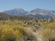 Siërra Nevada stock afbeelding