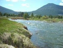 Siërra Nevada Mountain Stream royalty-vrije stock afbeelding