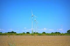 Siła wiatru rolny Dobrudja Bułgaria Zdjęcia Stock