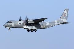 Siły powietrzne ładunku samolot Zdjęcie Stock