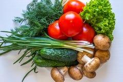 Si espande rapidamente il cetriolo dell'insalata dei pomodori su fondo bianco Immagini Stock