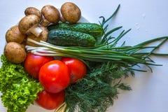 Si espande rapidamente il cetriolo dell'insalata dei pomodori su fondo bianco Fotografia Stock Libera da Diritti