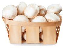 Si espande rapidamente il fungo prataiolo in un canestro di vimini isolato su bianco Immagini Stock Libere da Diritti