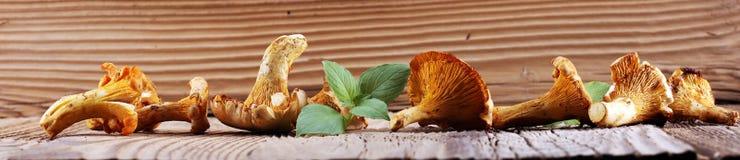 Si espande rapidamente il galletto sulla tavola Galletti selvatici crudi dei funghi Fotografia Stock Libera da Diritti