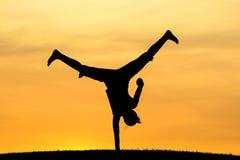 Si ha passato il cartwheel Fotografia Stock Libera da Diritti