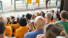 Si RACHA, TAILANDIA - 17 gennaio 2018: Gli spettatori con lo smartphone e le compresse sparano la manifestazione degli elefanti s archivi video