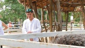 Si RACHA, THAILAND - JANUARI 17, 2018: Turistmatningsstrutsar på zoo arkivfilmer