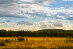 Si rannuvola i prati ed i campi nella valle Fotografia Stock