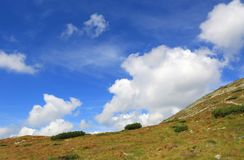 Si rannuvola il prato sul pendio di montagna fotografia stock libera da diritti