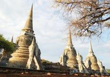 Si Sanphet, Ayutthaya, Thailand van Phra van Wat Stock Afbeelding