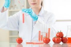 Si vous pas sure au sujet de la nourriture d'OGM, effectuez votre travail à la maison Image libre de droits
