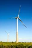 siła wiatru Zdjęcie Stock