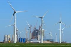 Siła wiatru Zdjęcie Royalty Free