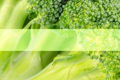 Sia a dieta, concetto di salute, macro vicina su dei broccoli Immagine Stock Libera da Diritti