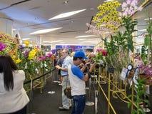 Siam paragon bangkok orchid chalenge 2014 Royalty Free Stock Photo
