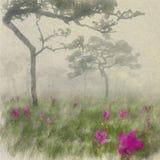 Siam Tulip Field nella mattina nebbiosa Acquerello di arte di Digital su vin immagine stock