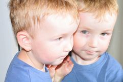 Siamese brothers Royalty Free Stock Photos