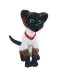 Siamese cat Royalty Free Stock Photos