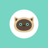 Siamese cat head round circle icon in flat design style. Cute cartoon character. Happy sitting kitten with blue eyes Stock Images