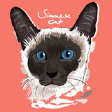 Siamese Cat Painting Poster vector illustratie