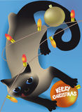 Siamese cat playing with Christmas decorations, holiday card Stock Photography