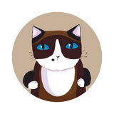 Siamese cat. Vector illustration. Stock Image