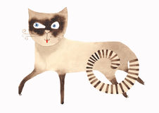 Siamese Cat. Watercolor Siamese Cat Walking Hand Drawn Sketch Pet Portrait Illustration isolated on white background Royalty Free Stock Photography