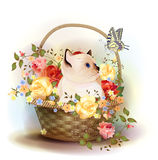 siamese kitten sitting in a basket with ros Royalty Free Stock Photography