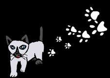 Siamese kitty Royalty Free Stock Image