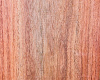 Siamese Rosewood Stock Image