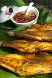 Siamesische Art gegrilltes Huhn mit Paprika-Soße Lizenzfreie Stockfotos