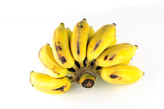 Siamesische Bananen Lizenzfreie Stockfotos
