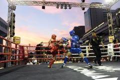 Siamesische Boxveranstaltung lizenzfreies stockbild