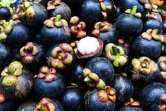 Siamesische Frucht der Mangostanfrucht Lizenzfreie Stockbilder