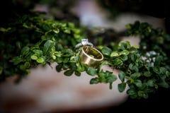Siamesische Hochzeit Stockbild