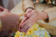 Siamesische Hochzeit Gemüse, Rezept Stockbilder