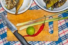 Siamesische Küche Lizenzfreie Stockfotografie