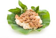 Siamesische Nahrungsmittel, gerührtes Schweinefleisch mit klebrigem Reis Lizenzfreie Stockfotos