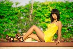 Siamesische Schönheit Lizenzfreies Stockfoto