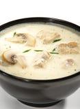 Siamesische Teller - Suppe mit Coco-Milch Lizenzfreie Stockfotografie