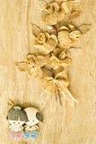 Siamesischer Art. Stockbilder