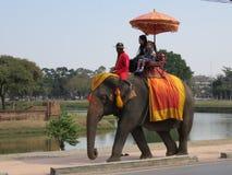 Siamesischer Elefant Stockfoto