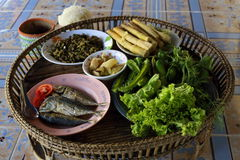 Siamesisches Abendessen Stockbild