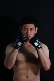 Sian Fighter boxer standing strong Stock Images