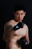 Sian Fighter boxer standing strong Stock Photo