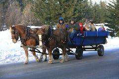 siana przejażdżki s zima Obraz Royalty Free