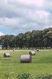 Siano rolki w zielenieją pole na Irlandzkiej wsi Fotografia Royalty Free
